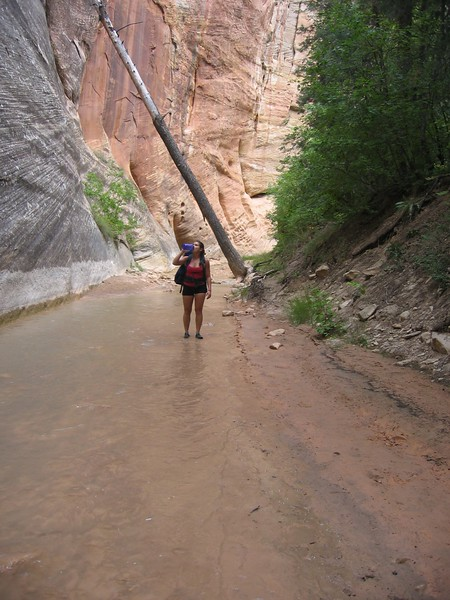 "...hiker taking a break in zion national park's ""The Narrows""...hot dessert air and cold, cold, cold virgin river hike...a spectacular sight to behold is this hike.."
