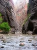 ...more of the virgin river cutting (for millions of years) the narrows slot canyon in zion national park, utah...