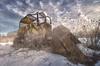 Caterpillar ,Detroit Muscle Auto fine art photographs