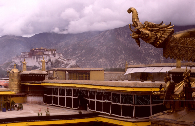 On the roof of the Jokhang Monastery, with the Potala hovering in the background