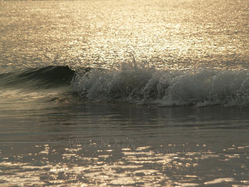 Sparkling Sea in South Carolina Sunrise