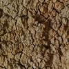 Cracked, dry earth on coastal cliffs - Torrey Pines, CA