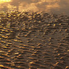Sand formations in sunrise, Hunting Island