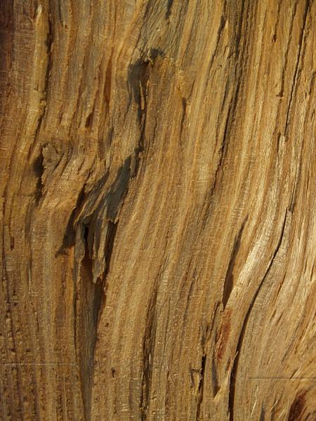 Osage orange wood