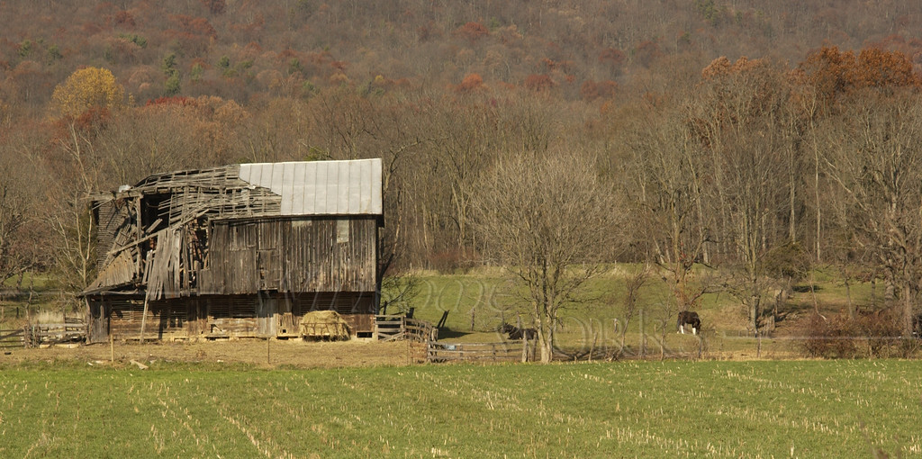 Old barn in Harrisonburg,Virginia