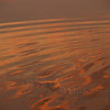 Water's edge, sunrise (Hunting Island S.P., SC)
