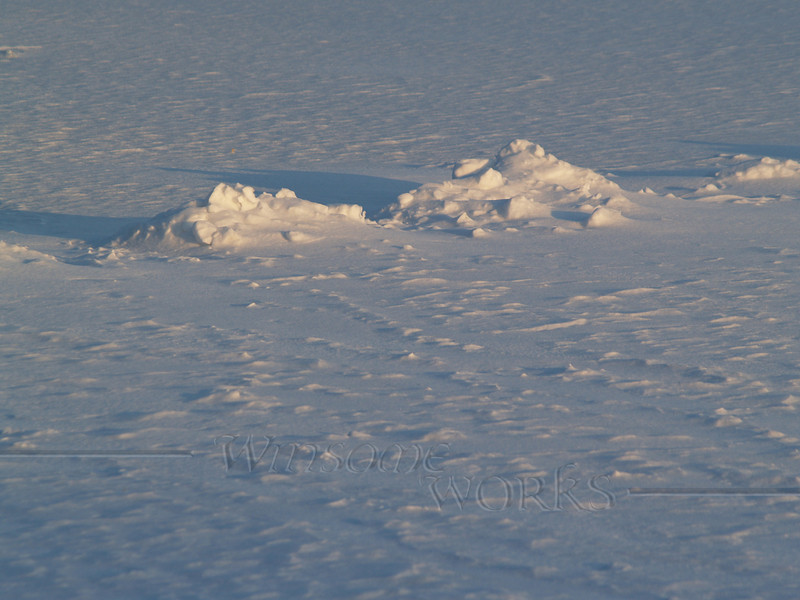 Snow on Lake Nockamixon