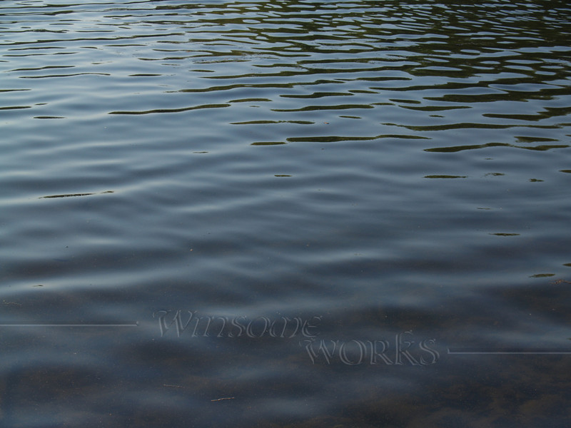 Ripples at Green Lane Reservoir