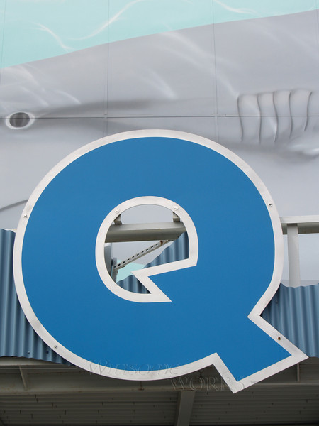 """Q"" at the Camden Aquarium"