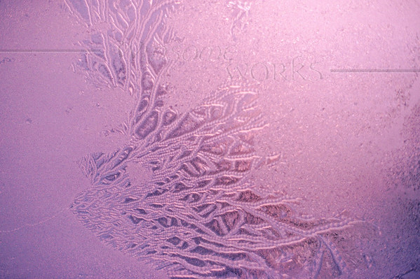 (2) Frosty Window at dawn - Steinsburg, PA