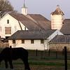 Farm along Rt. 202 - Buckingham, PA