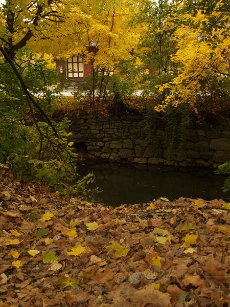Old Train Station seen through leaves at Moravian College, Bethlehem