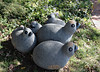"""Quail Family,<br /> Royal Katiyo, 1998, Springstone<br /> <br /> """"I was first fascinated by these bustling birds when learning to sculpt at the Gavazi claims on the Great Dyke of Zimbabwe.""""<br /> <br /> The Great Dyke referred to in the artist's description is one of the major sources of stone blocks for the carvers in Zimbabwe.<br /> <br /> 'Chapungu'  exhibit, Powell Gardens, Missouri"""