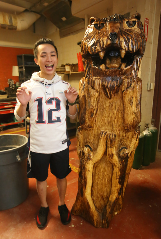 . Chelmsford High senior Felix Huang, 18, imitates the carving of a lion he did from a section of the purple beech that had to be cut down on Chelmsford Town Common in 2013. (SUN/Julia Malakie)