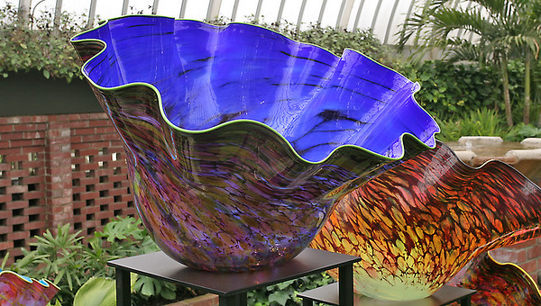Chihuly At Phipps