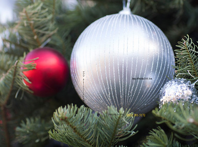 Xmas tree ornaments 3299