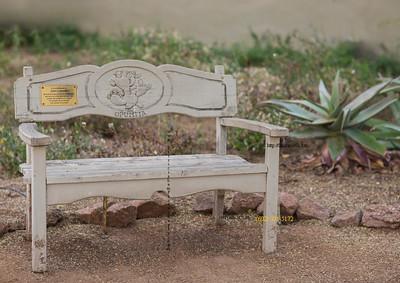 Opuntia bench  bot gardens 3287