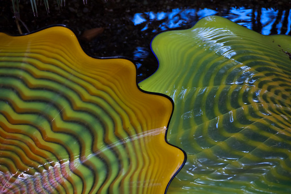 Chihuly Exhibition #2 - Interior displays