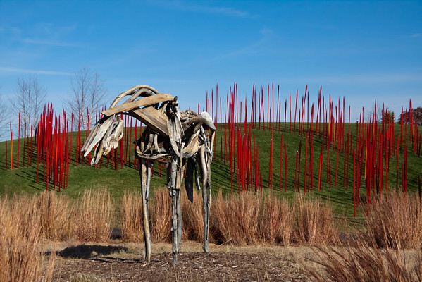Chihuly Exhibition #4 - Reeds & Friends