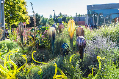 Chihuly Exhibition at Denver Botanical Gardens