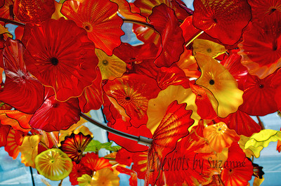The Glass House Chihuly Gardens and Glass in Seattle