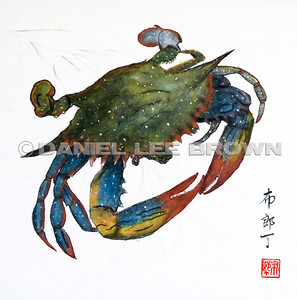 Chinese brush paintings. I have been studying Chinese Brush Painting for about 9 years and this gallery contains some of my favorite paintings.