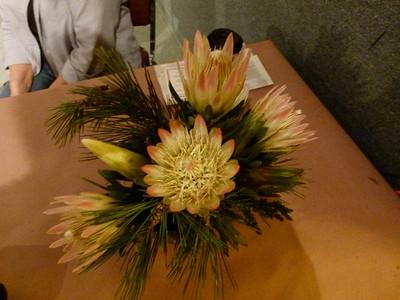 Christmas 2011 ~ San Diego Floral Assoc ~ Balboa Park