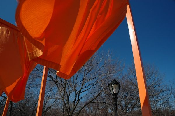 Christo & Jean-Claude's Gates