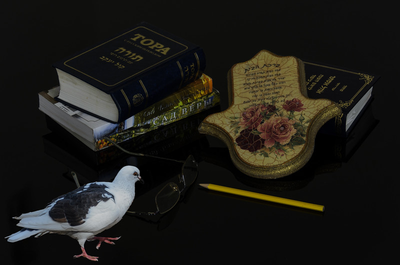 Pigeon and books
