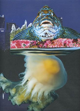 2021 03 07 Big Fish Big Pond [5]