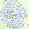 col-sk-highland-DSC08324