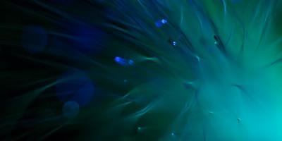 """Mare Alpha"" Image # BD12"