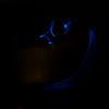 coreroclightpainting-15