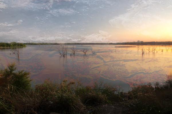 The Lake's bottom