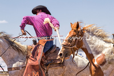 Catching The Bronc