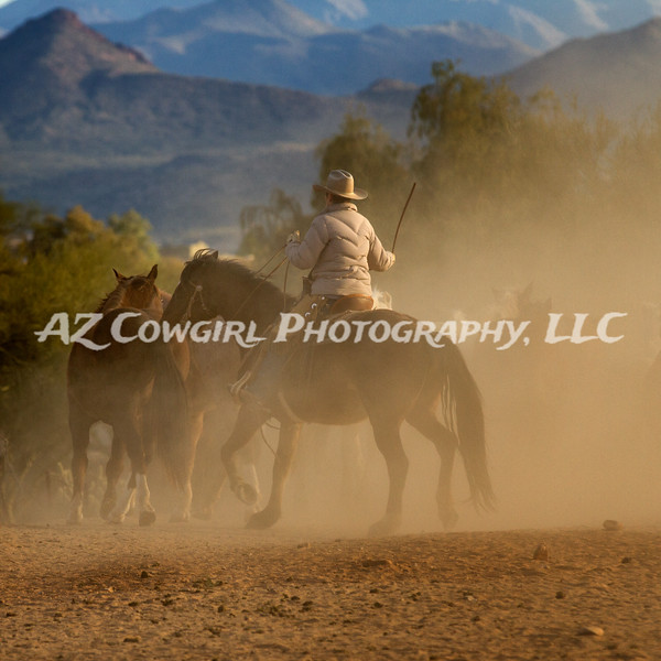 Cowgirl In The Dust
