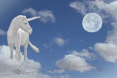 The Unicorn Dream