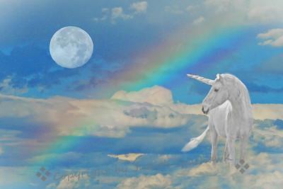 Unicorn Over the Rainbow