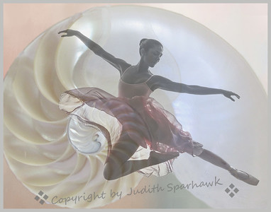 Shell Dance