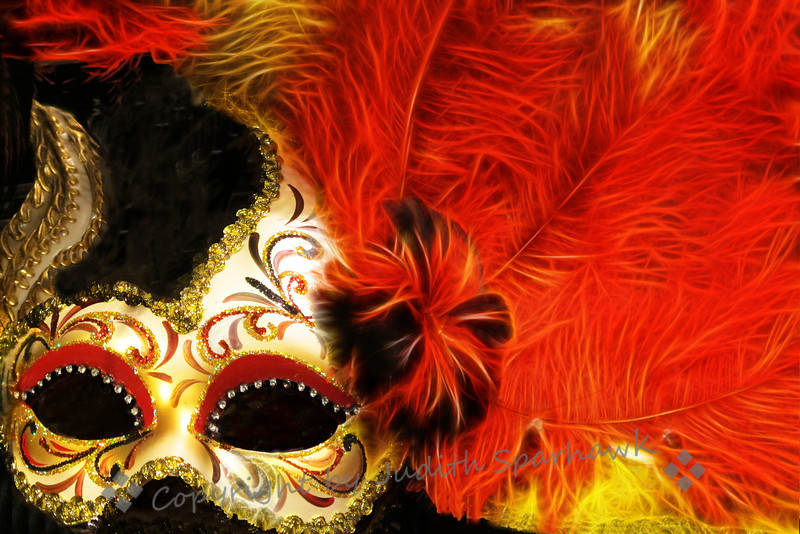 Masquerade ~ Reworking of the mask I found at Pier 1 Imports, especially the feather detail.