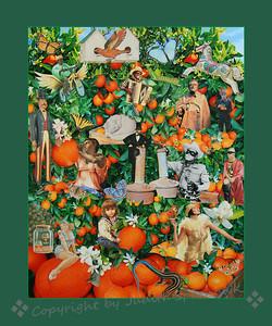 Secret Life in the Orange Grove