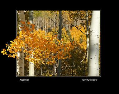 """Aspen Trail"""