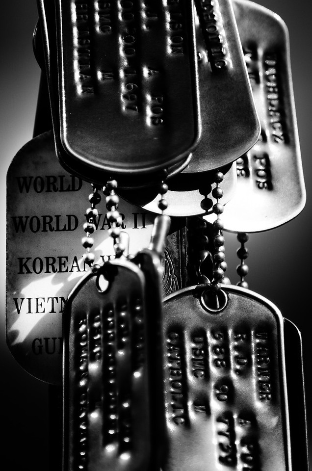 Dog Tags From War