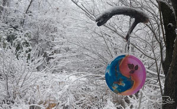 YY spinner 1 in snow -00005-DSC03508