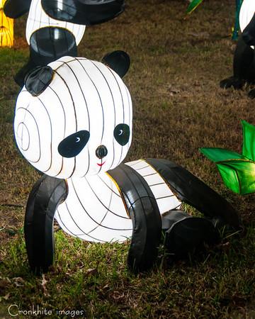 DFW Chinese Lantern Festival
