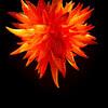 Chandelier Sun