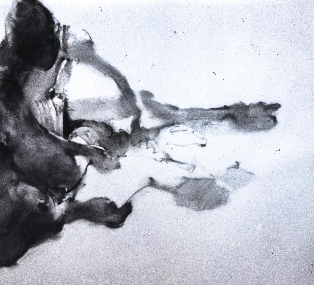 Ballet #152