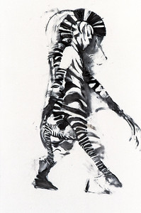Southern Cape Zebra - Study II