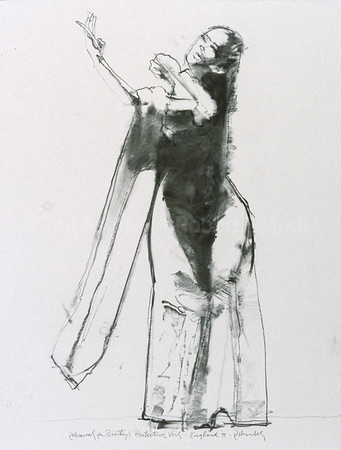 Study from 'Protecting Veil' (2000)