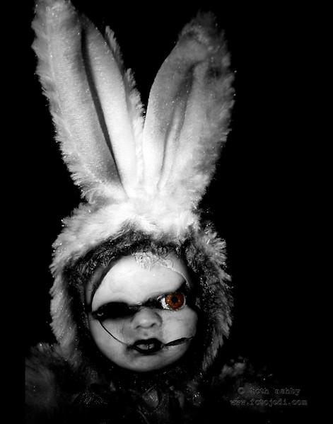 'Evil Bunny'<br /> 2008
